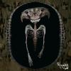 skull101.jpg
